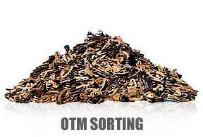 Rail Service Group - OTM Sorting